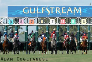 Gulfstream-Park-Opener-2011-START2